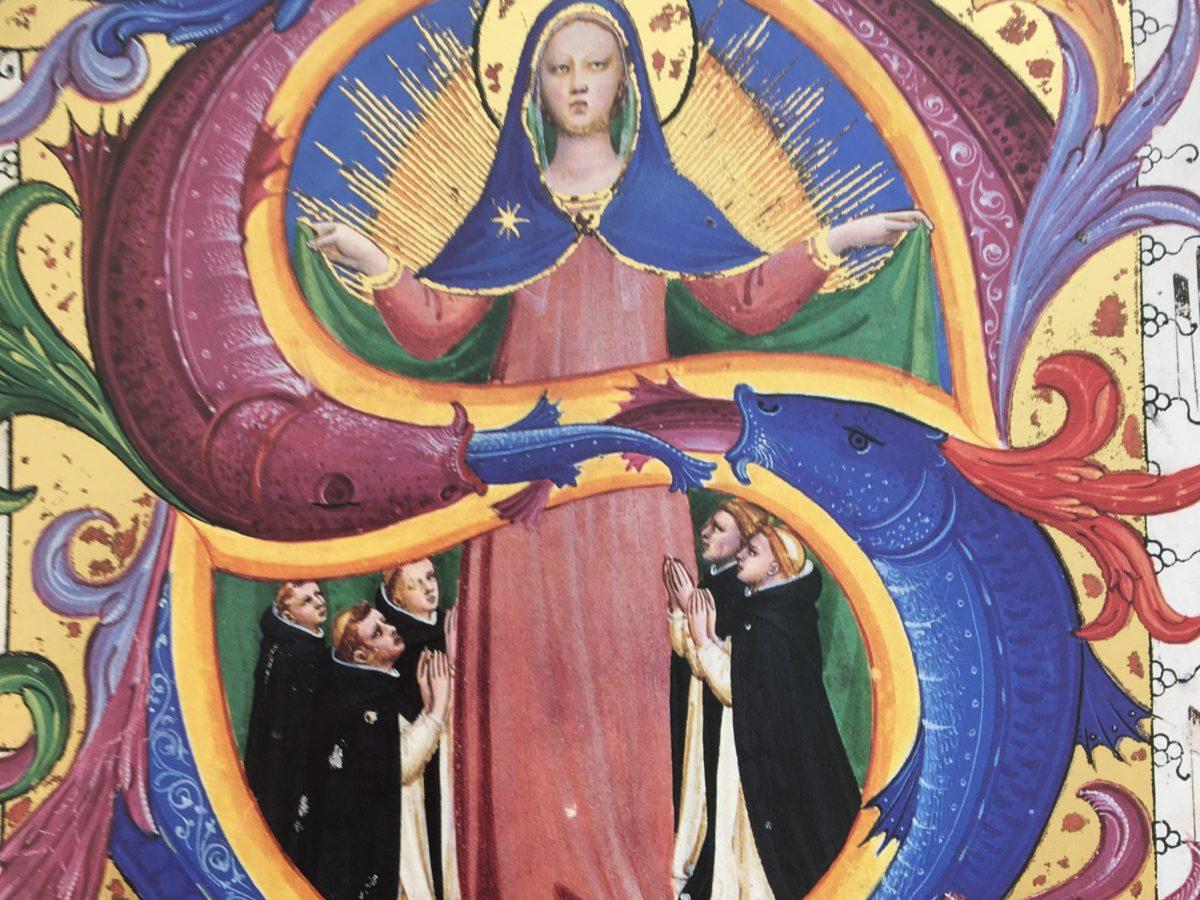"""MS 558 c.156 V """"Madonna della Misericordia con cinque frati inginocchiati"""