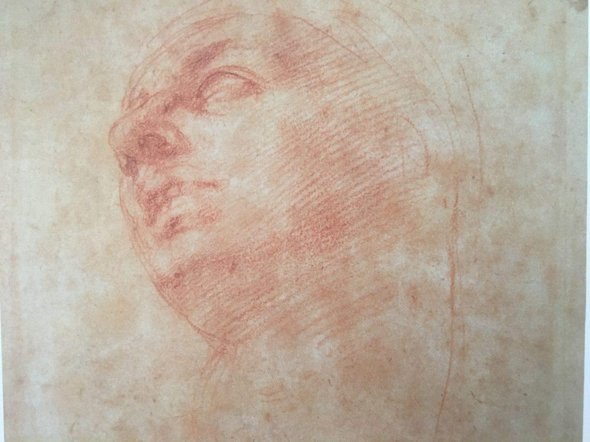 Studio di testa per la Madonna del Tondo Doni-Michelangelo-Casa Buonarroti